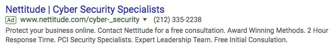nettitude google ads campaign