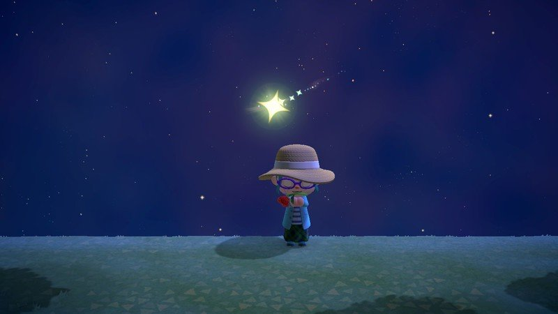Animal Crossing New Horizons Shooting Star