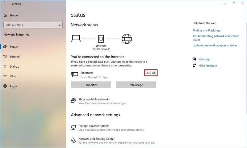 Windows 10 data usage stats