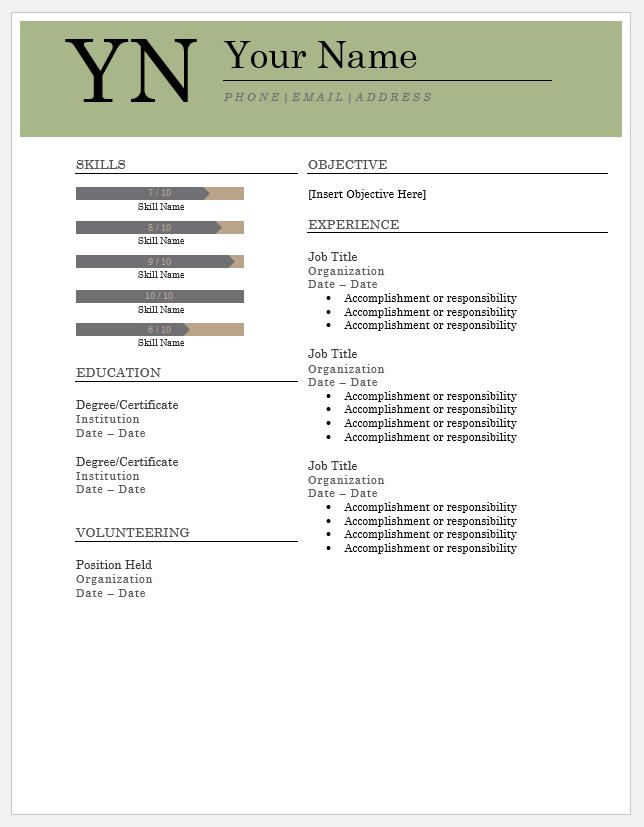 Bold Serif Resume