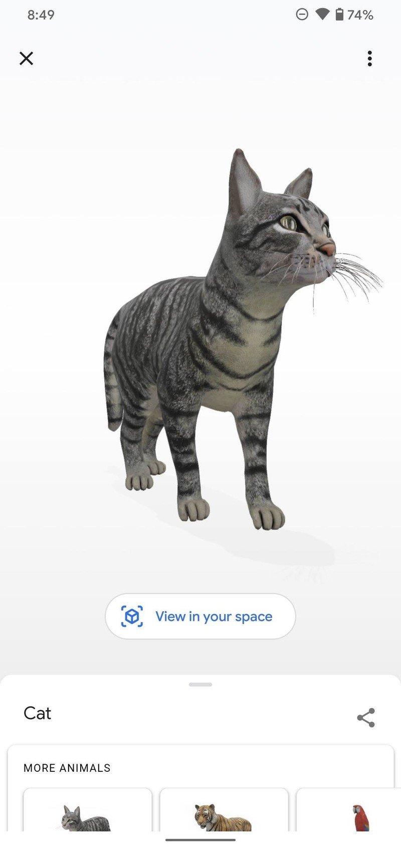 google-3d-animal-how-to-3.jpg