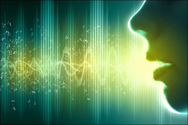 A silhouette of a face with sound waves behind it.