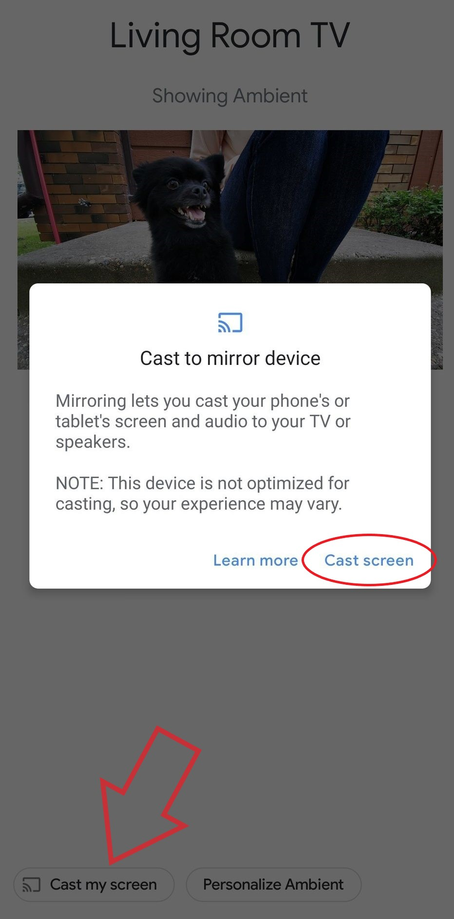 Mirror your Android or iPhone's Screen to Chromecast