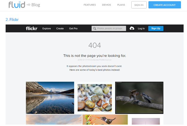 Creating interactive 404s - Add popular landing pages to encourage engagement