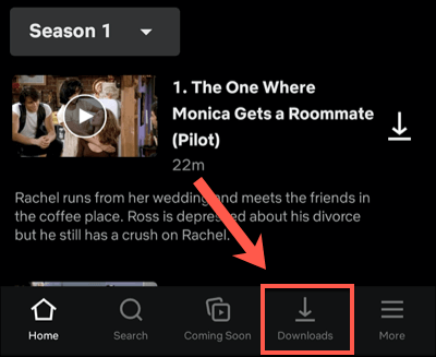 Netflix-Android-Downloads-Tab.png