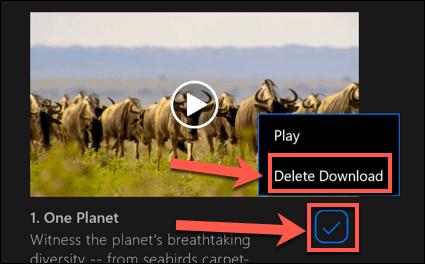 Netflix-Windows-Delete-Downloaded-Content.png
