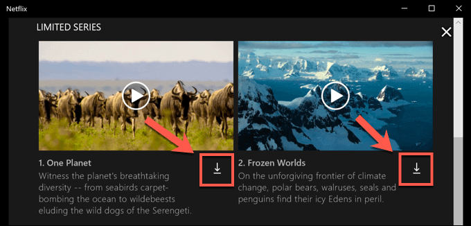 Netflix-Windows-Download-Icon.png