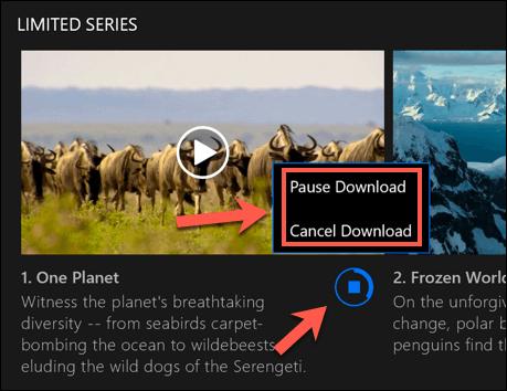 Netflix-Windows-Download-Options.png