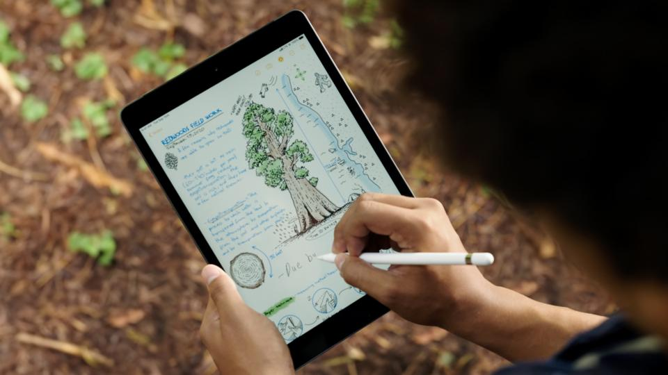Apple iPad 10.2in (2020): Eighth-gen iPad receives performance boost  without the price hike – WebSetNet