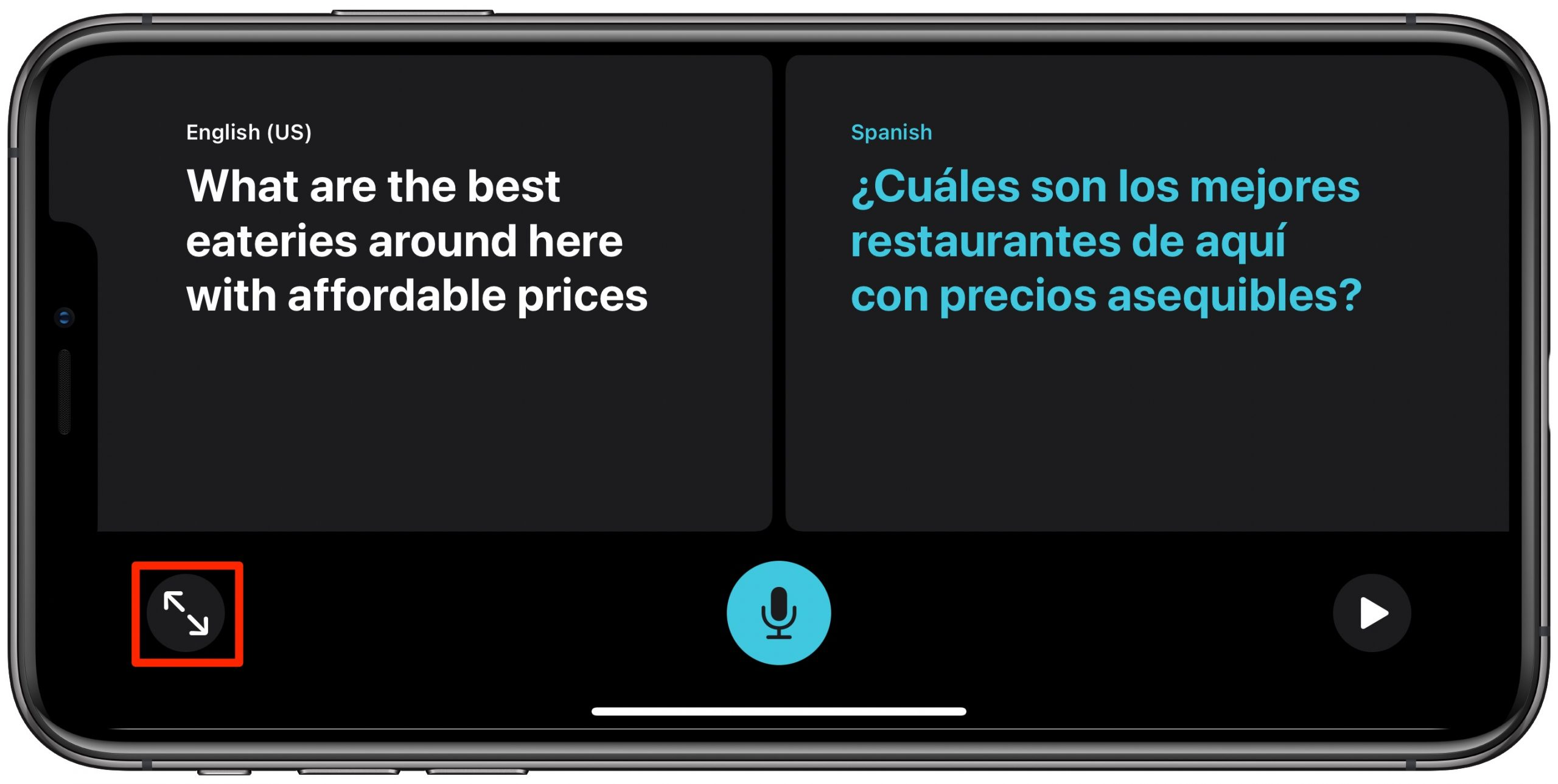 Apple Translate Conversation mode - maximizer button highlighted