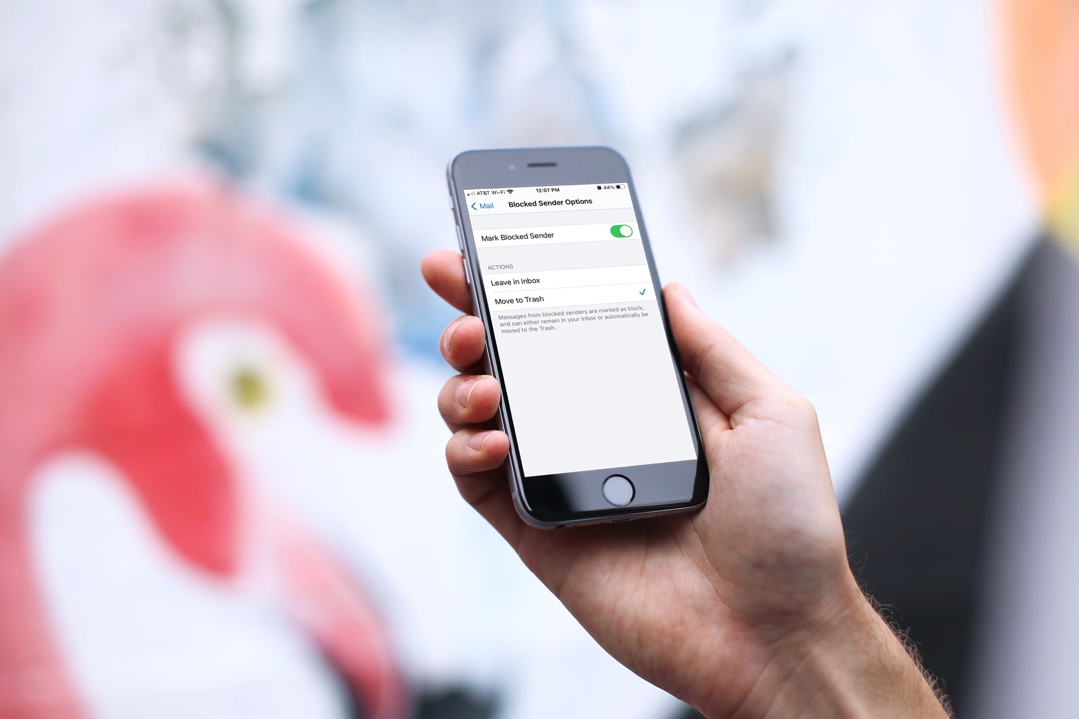 Move Blocked Sender Mail to the Trash on iPhone