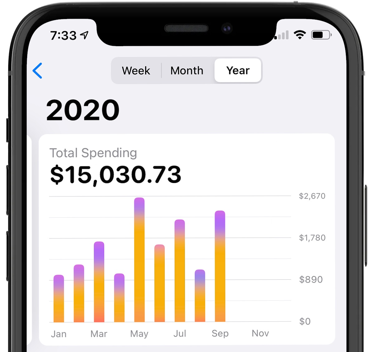 apple-card-yearly-spending-activity.jpg