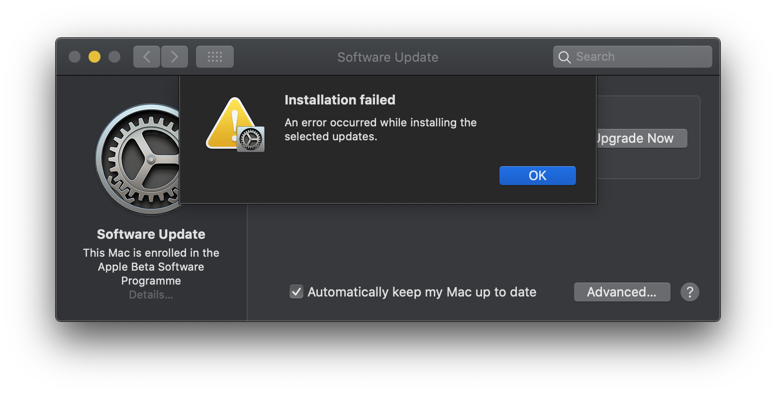 Error occured installing big sur