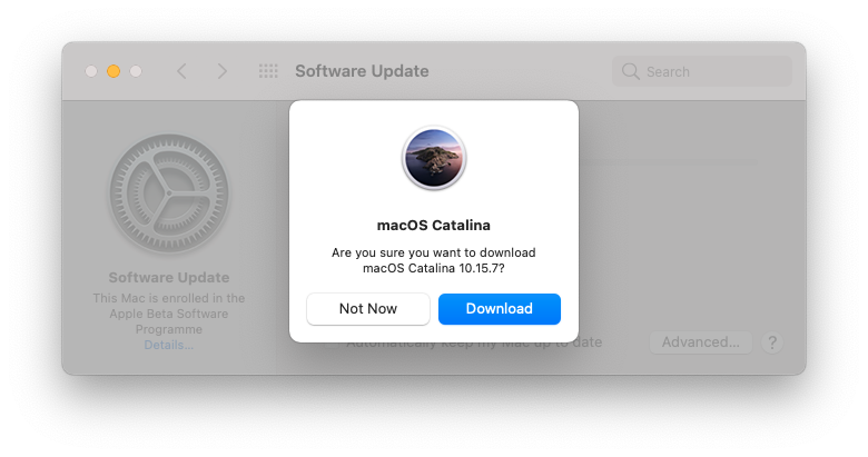 Download Catalina