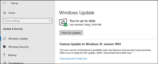 An option to install a feature update in Windows Update.