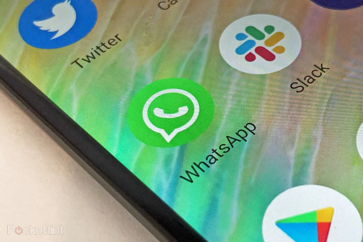 155521-apps-news-whatsapp-now-requires-fingerprint-or-face-identification-to-access-pc-or-web-versions-image1-s9dvvihdq8