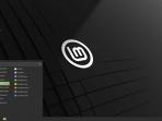 Linuxmint Cinnamon