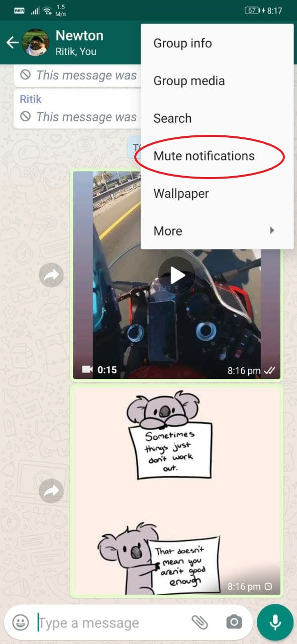 Mute Contact Chats and Groups on WhatsApp