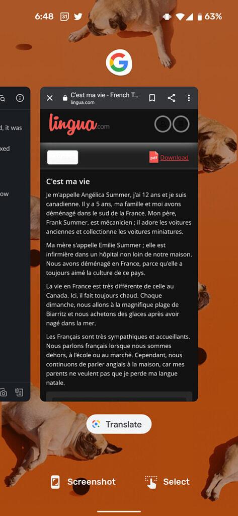 Google-recents-screen-translate-french-473x1024-1.jpg