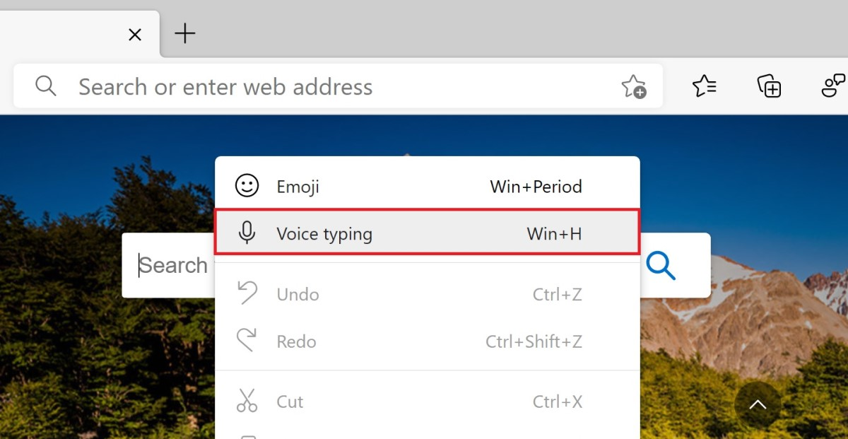Voice Typing Edge Canary