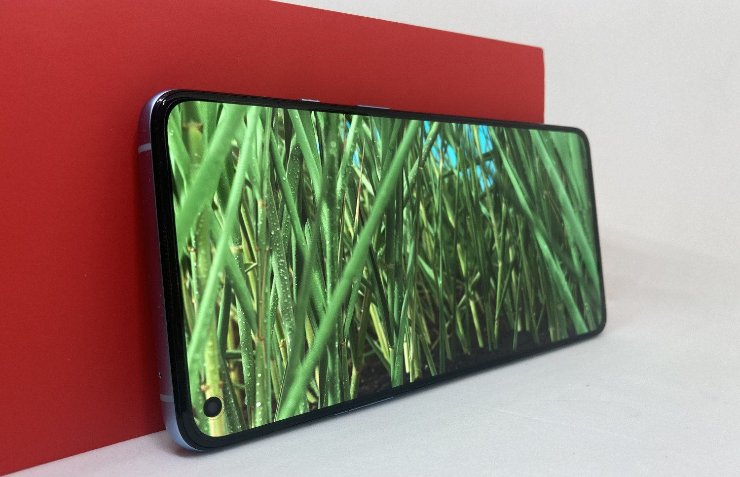 OnePlus 9R Display Review