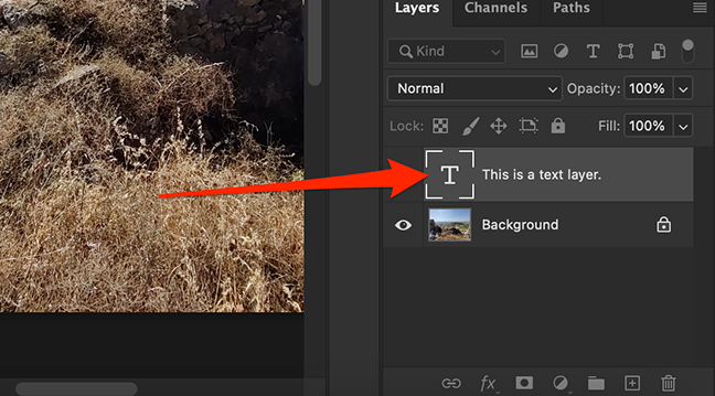 A layer has been copied to secondary document in the Photoshop window.