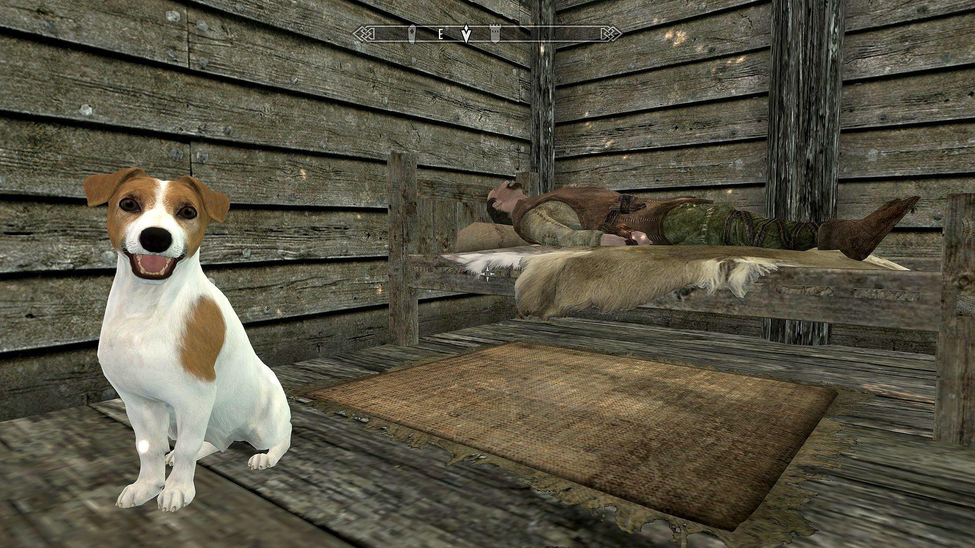 skyrim-mod-new-dog-breeds