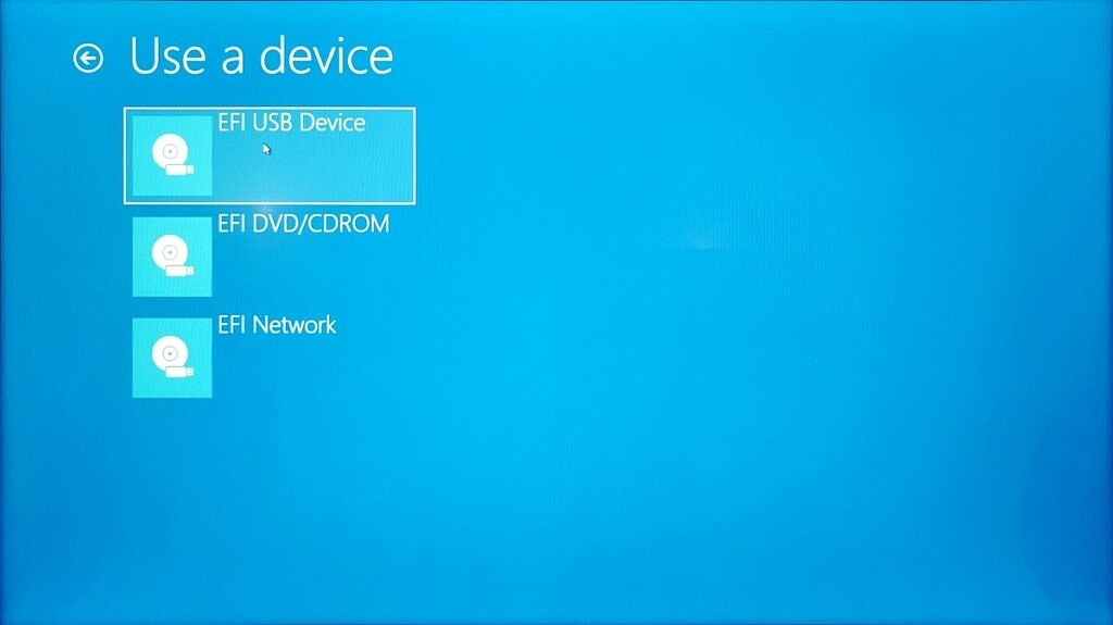 Selecting a device in the Windows advanced startup menu