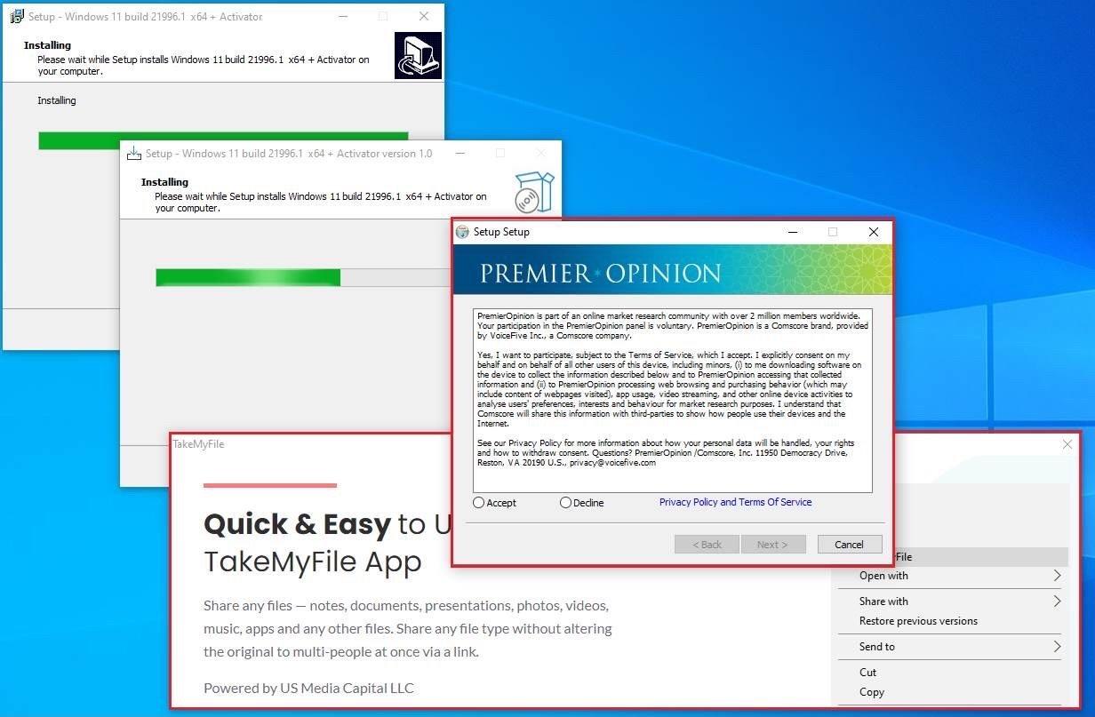 fake-windows-11-installers-screen2-2.jpg