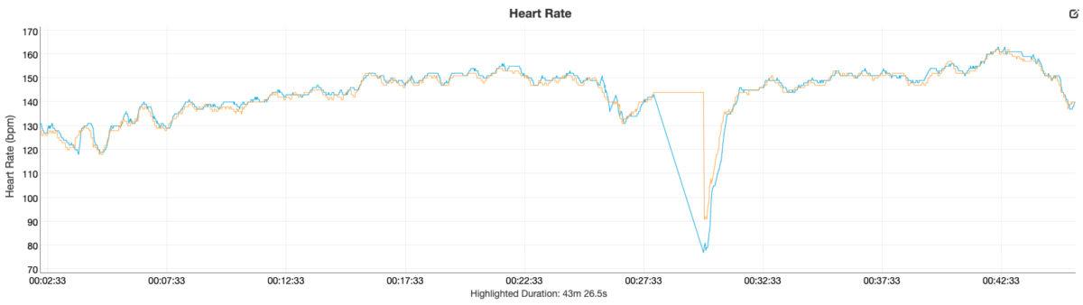 fitbit luxe review heart rate data vs garmin fenix 6 pro