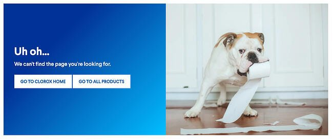 404 error page example from the website clorox