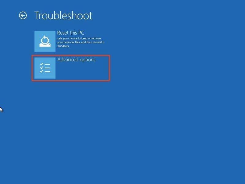 troubleshoot-advanced-options.jpg