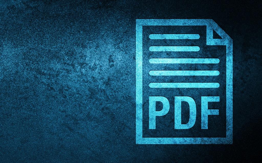 pdf-document-1.jpeg